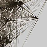Cinema 4D X-Particles Xp Network