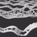 X-Particles  Cycles 4Dで作られた格好良い動画『FLUDZ』